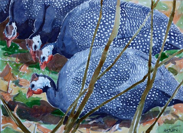 Andrew Haslen, Parelhoenders. Aquarel op papier 51 X 72cm
