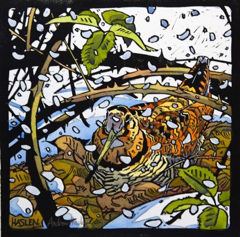 Andrew Haslen, Winterhoutsnip II hand gekleurde Linoleumsnede. 31 x 31 cm