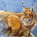 Lynx, Andrew Haslen, Olieverf op papier